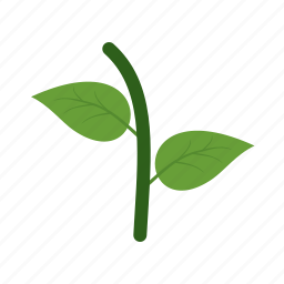 autumn, fall, green, leaf, leaves, natural, nature icon