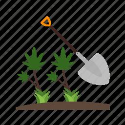 beautiful, mustard, nature, plant, plantation, summer, tea icon