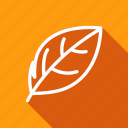 eco, ecology, environment, green, leaf, nature, plant icon