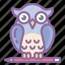 education, graduation, owl, university, wisdom icon