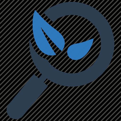 organic search, search engine, seo icon