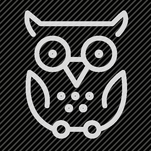 education, knowledge, owl, school icon