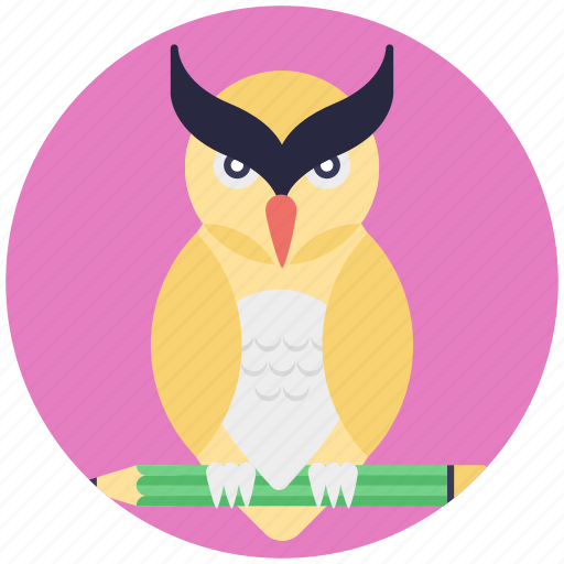 owl education, owl with pencil, professional education concept, wise owl symbol icon