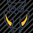 education, owl, science, study
