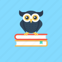 knowledge and wisdom, learning insight, logic and rationale, logical learning., wisdom icon