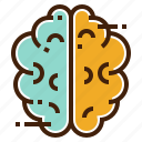 brain, brainstorming, creative, education, idea, science icon