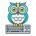 e-learning, education, keyboard, online, online education, owl icon