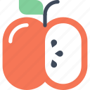 apple, diet, education, food, fruit, healthy, nutrition