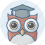 classroom, education, owl, school, smart class, smartclasses, teacher icon