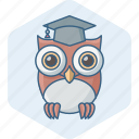 classroom, elearning, knowledge, learning, owl, smartclasses, teacher icon