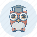 class, classroom, owl, professor, smartclass, teacher, university icon
