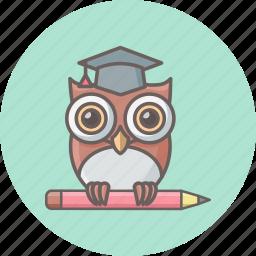 bird, classroom, education, knowledge, owl, professor, teacher icon