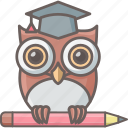 class, classroom, education, learning, owl, school, teacher icon