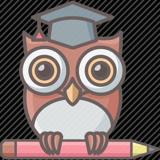 b9408d3d20b2 owl school - Mara.yasamayolver.com
