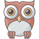 classes, education, knowledge, owl, school, smartclass, teacher icon