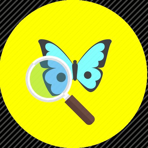 botany, eco, ecology, environment, natural, nature, organic icon