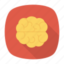 brain, business, health, healthcare, learning, medical, meeting icon