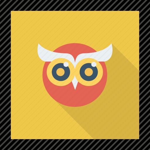 animal, bird, education, graduation, nightbird, owl, owlteacher icon