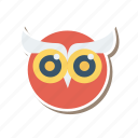 animal, bird, education, graduation, nightbird, owl, owlteacher icon