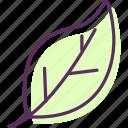 foliage, frond, leaf, leaflet