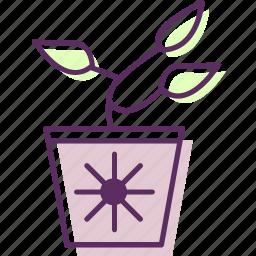bush, ferns, plant, pot, shrubs icon