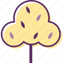 plant, school, shrub, tree, wood icon