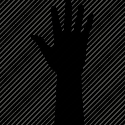 arm, five, hand, high, palm, raise, raised icon