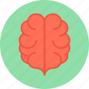 brain, head icon