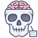 anatomy, biology, medical, skull icon