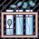 flasks, natural, plants, science