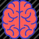 brain, genius, intelligence, mind
