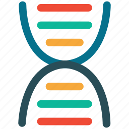 dna, dna spiral, medical, science icon