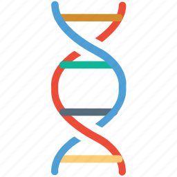 biology, dna, dna strand, science icon
