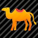 camel, egypt, summer, tribal