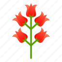 egypt, floral, flower, nature, plant