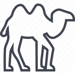 animal, camel, egyptian, hieroglyphs icon