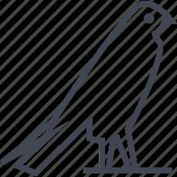 bird, crow, egyptian, hieroglyphs icon