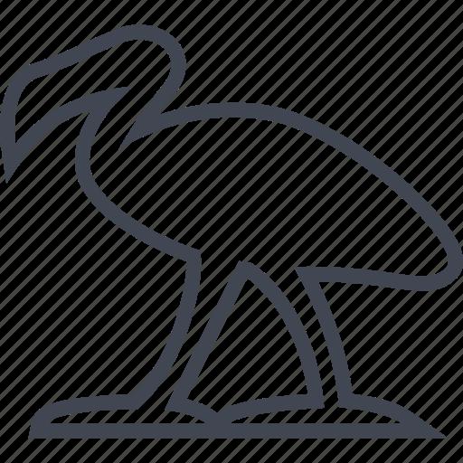 animal, bird, egyptian, flamingo, hieroglyphs icon