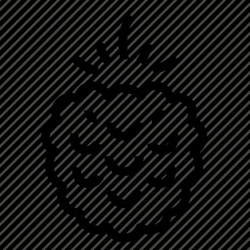 berry, raspberry icon