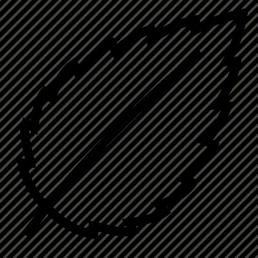 leaf, news icon