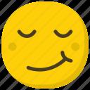 emoji, emoticon, happiness, happy smiley, smiling face icon