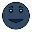 emoticon, emotion, face, happy smiley, smail, smiley icon
