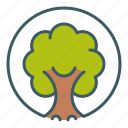circle, ecology, environment, forest, nature, tree, wood icon