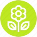 eco energy, eco power, ecology, leaf, plug