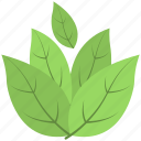 ecology, foliage, greenery, leafs, tree branch icon