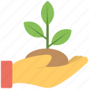 ecology concept, green foliage, greenery, leaves, mint leaf, tree branch icon