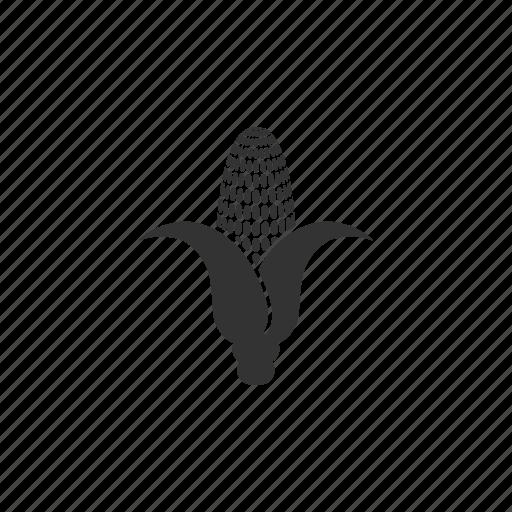 agriculture, cob, corn, eco, farm, food, green, growth, illustration, leaf, organism, plant icon