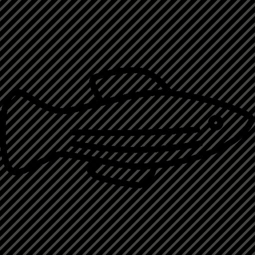 aquarium, fish, fishing, habitat, sea, seafood, water icon