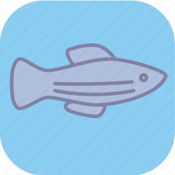 animal, ecology, environment, fish, nature, ocean, sea icon