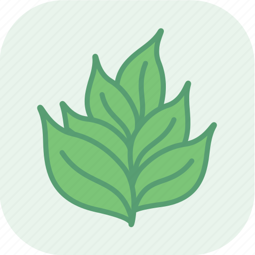 eco, ecology, environment, green, nature, plant, seedling icon